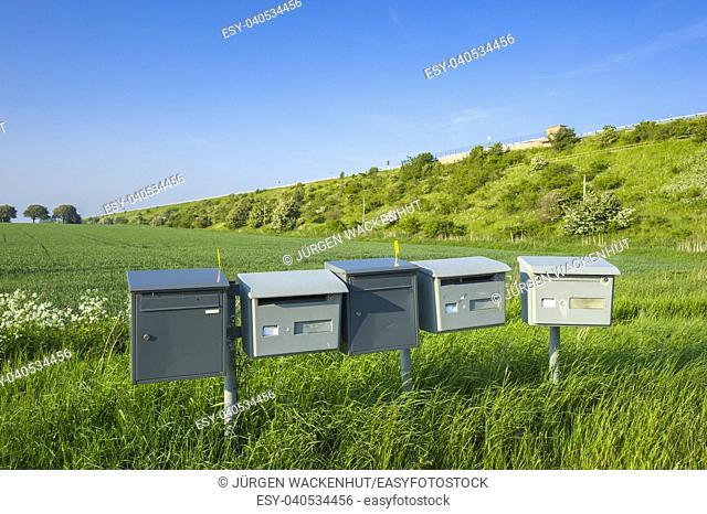 Letter boxes in grain field, Fehmarn, Baltic Sea, Schleswig-Holstein, Germany, Europe