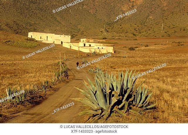 `Cortijo de los Genoveses' Traditional farmhouse in Campillo de Genoveses Cabo de Gata-Nijar Natural Park  Biosphere Reserve, Almeria province, Andalucia, Spain