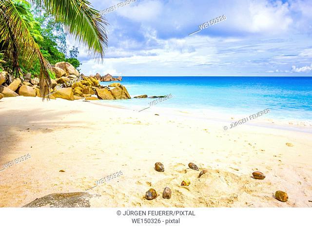Beach of the Seychelles, Island Praslin, Beach Anse Georgette