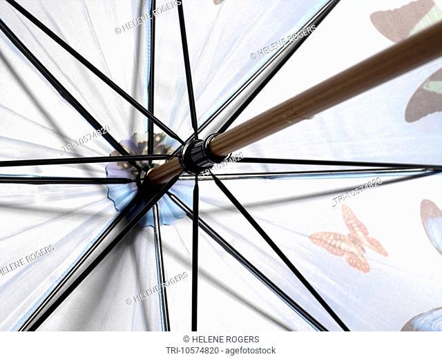 Top of Umbrella showing Spokes