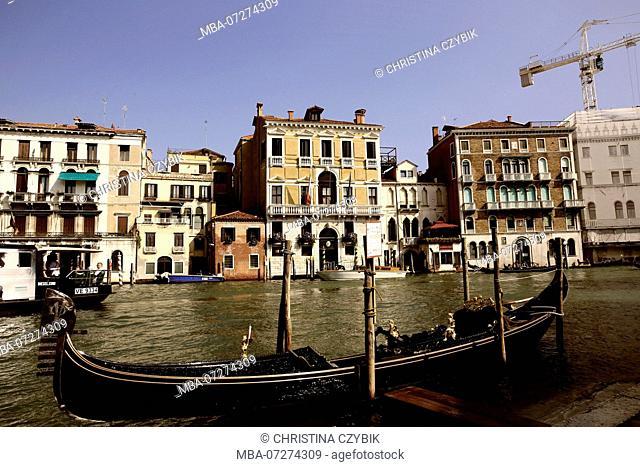 Street Photography in Venice, Italy