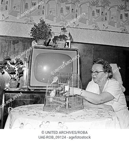 Eine ältere Frau in ihrem Wohnzimmer mit einem Vogelkäfig, Deutschland 1960er Jahre. An elder woman in her living room with a bird cage, Germany 1960s