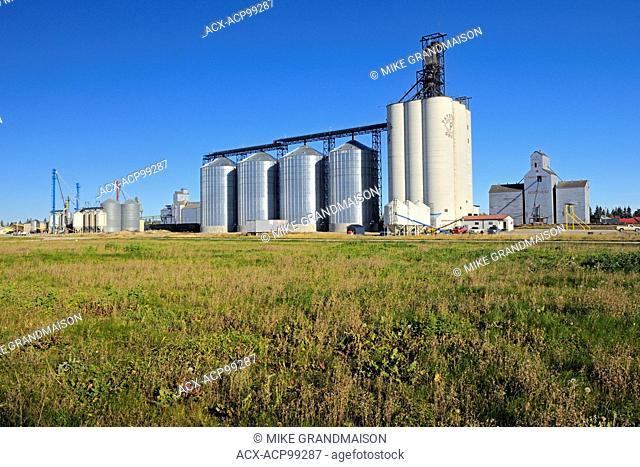 Inland grain terminal and grain elevator Indian Head Saskatchewan Canada