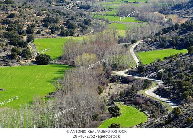 Fields, Pajares, Brihuega, La Alcarria, Guadalajara province, Castilla-La Mancha, Spain