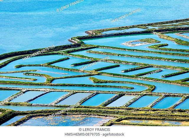 France, Charente Maritime, Ile de Re, La Couarde sur Mer, Fier d'Ars marshes (aerial view)