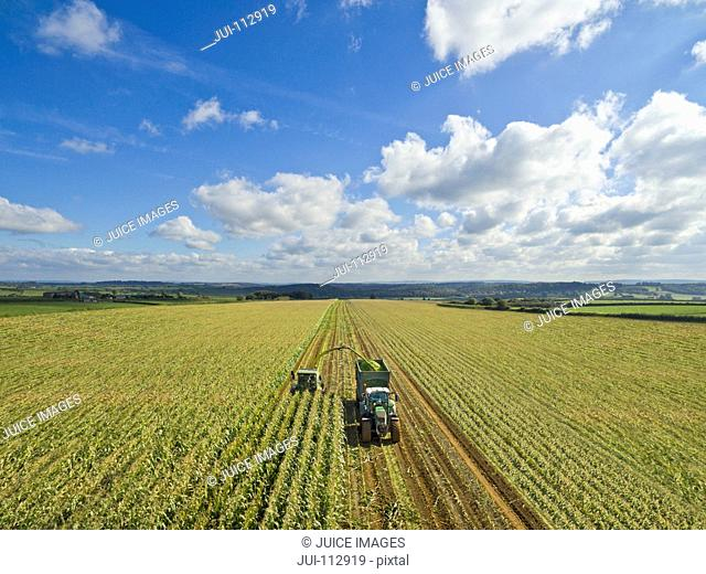 Aerial view of tractor filling trailer with harvested maize in sunny field under blue sky with clouds