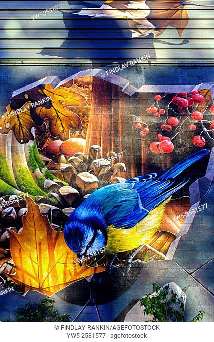 Urban art painted on an outdoors wall, of a blue tit in a berry tree, Glasgow, Scotland, UK