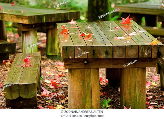 Red leaves on wooden table