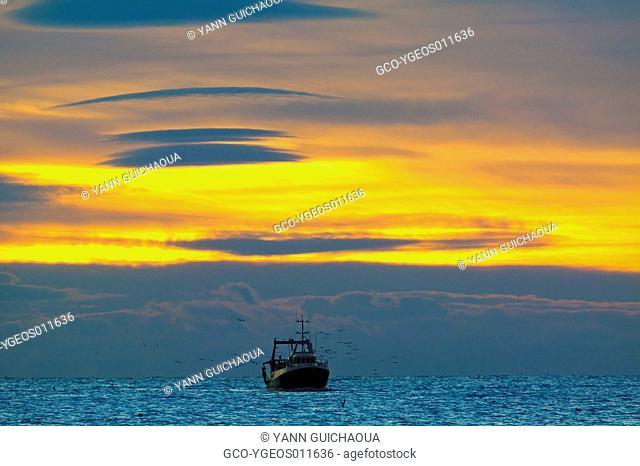 Fishing Boats, Mediterranean Sea, France