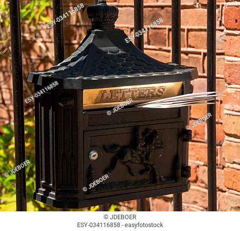 A photograph of a mailbox, a type that is seldom seen in a South Carolina historical district