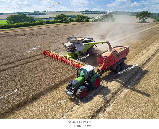 Aerial view of combine harvester harvesting wheat and filling tractor trailer with grain