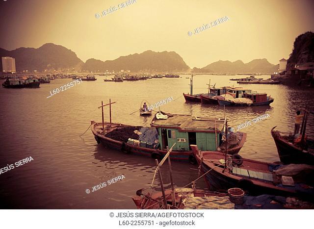 Boats in Cat Ba island, Vietnam