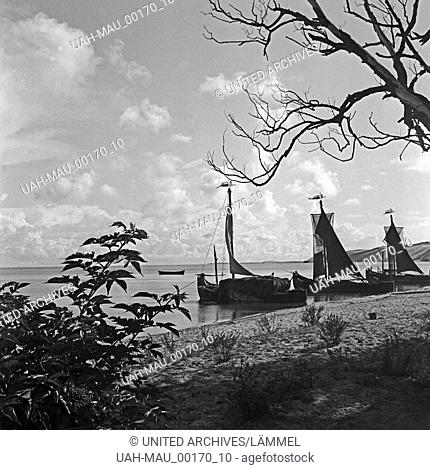Heuboote am Strand nahe Pillkallen an der Kurischen Nehrung in Ostpreußen, Deutschland 1930er Jahre. Boats loaded with hay anchroing at the beach near...