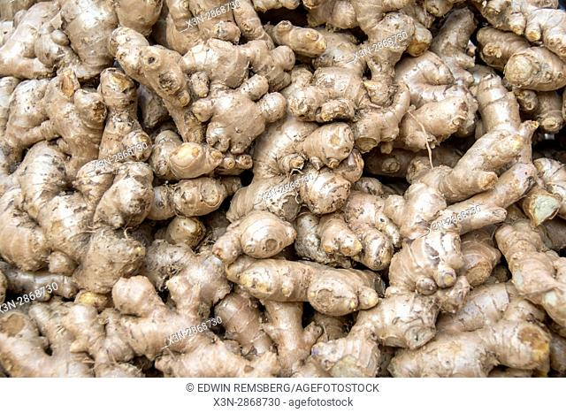 Johri Bazaar; Pile of ginger in Jaipur, India