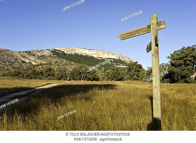 Cañada Real Galiana Sierra de las Cabrejas Soria Spain