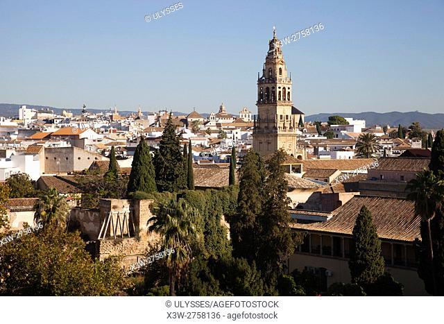 View from the Alcazar de los Reyes Cristianos, Cordoba, Andalucia, Spain, Europe