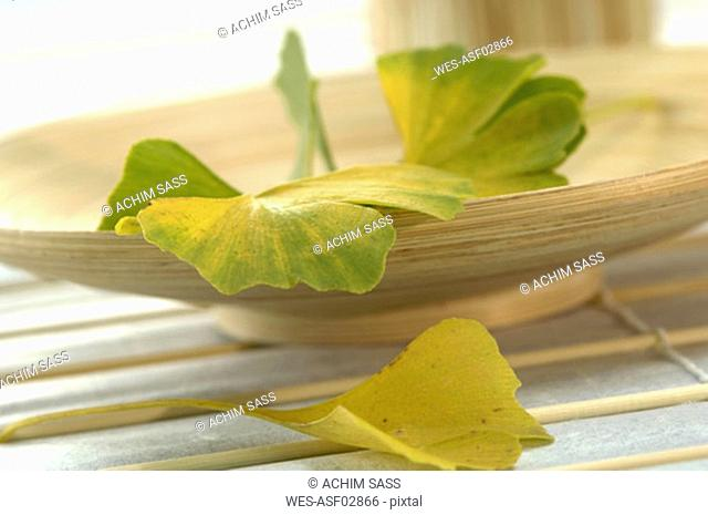 Ginkgo leaves in bowl, close-up