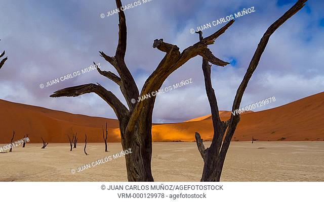 Deadvlei in Namib-Naukluft Park. Namibia