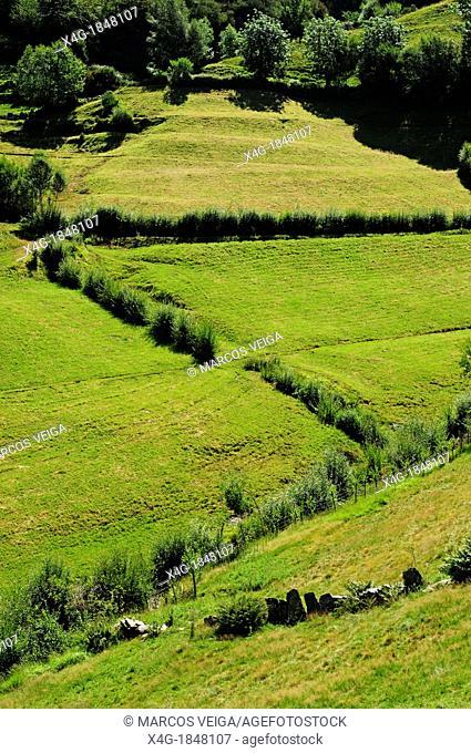 Mountain pastures  O Courel, Lugo, Galicia, Spain