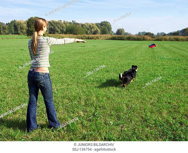 woman and Australian Shepherd dog - playing restrictions: Tierratgeber-Bücher / animal guidebooks
