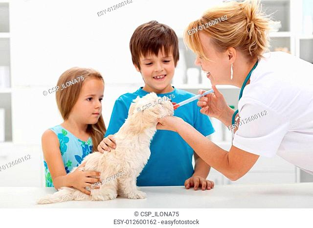 Kids with their pet at the veterinary doctor