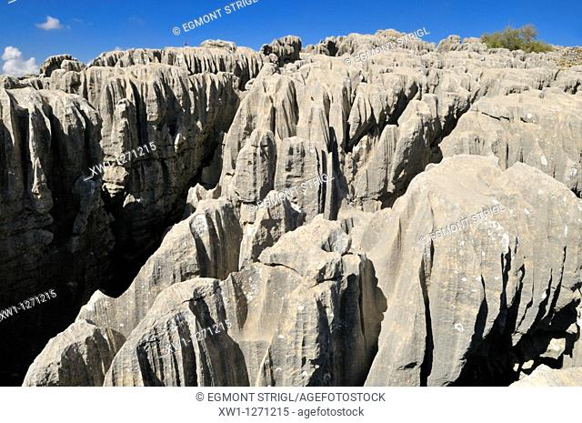 geology, eroded limestone, karst formation at Qalaat Faqra, Lebanon, Middle East, West Asia