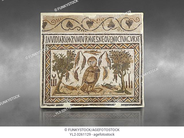 Picture of a Roman mosaics design depicting an owl, symbol of victory over envy. On either side of the Owl are symbols of Telegenii an North African Roman...