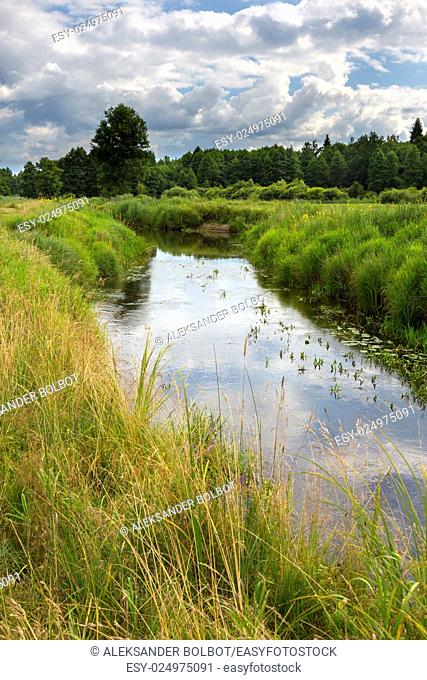 Slow flowing river in summer crossing partly abandoned meadows,Bialowieza forest,Poland,Europe