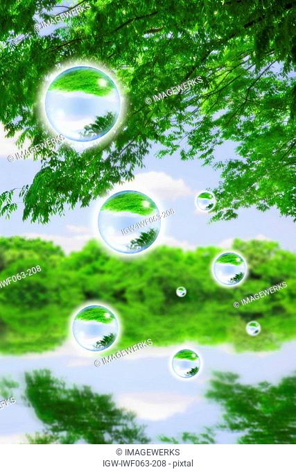 Reflection of trees on bubbles