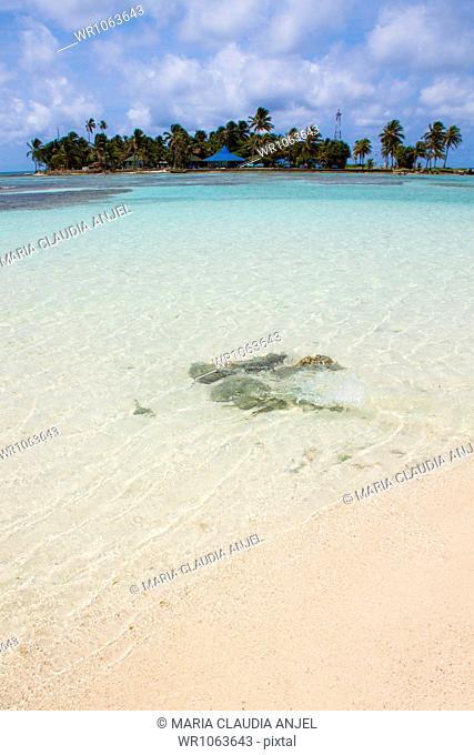 Hotel Decameron Aquarium; San Andres Island, Archipelago of San Andres, Providencia and Santa Catalina, Colombia