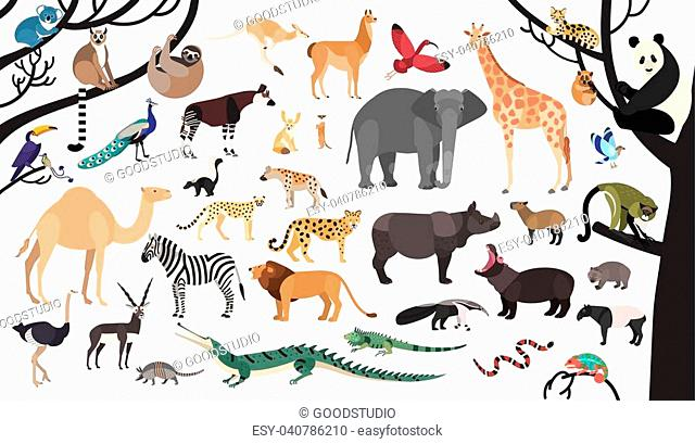 Collection of exotic animals and birds living in savannah and tropical forest or jungle isolated on white background. Set of cute cartoon characters