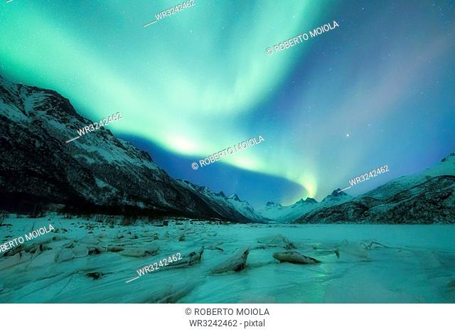 Northern Lights (Aurora borealis) on frozen sea, Olderfjorden, Svolvaer, Lofoten Islands, Nordland, Norway, Europe