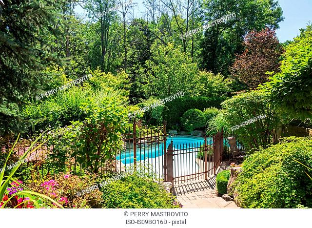 Outdoor swimming pool surrounded by wrought iron security fence and various shrubs and trees in luxury residential backyard