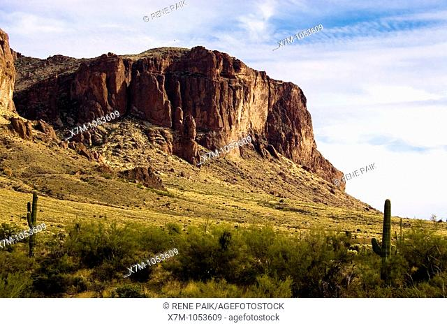 Superstition Mountains in Lost Dutchman State Park near Mesa, Arizona with Saguaro Cacti in foreground  The Superstition Wilderness area is managed by Tonto...