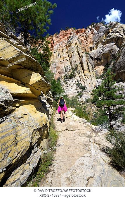Hiking trail to Observation point, Zion National Park, located in the Southwestern United States, near Springdale, Utah