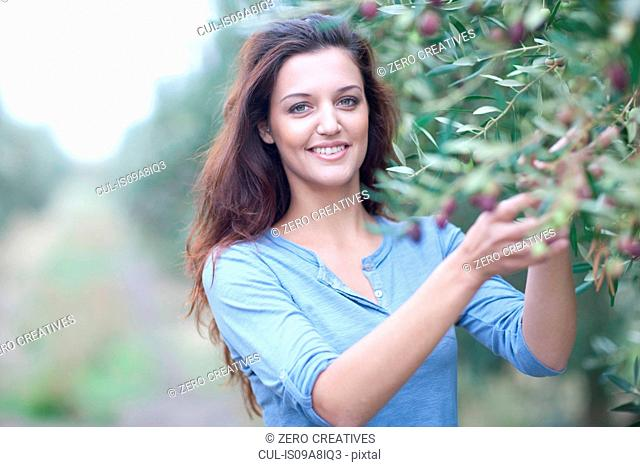 Woman picking olives in olive grove
