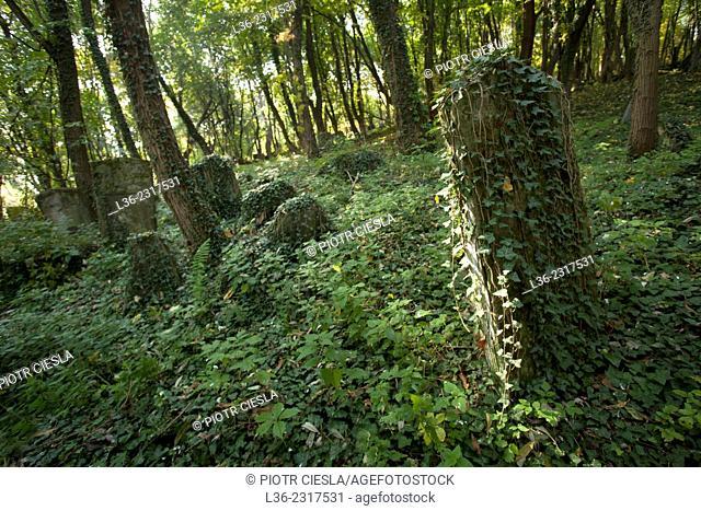 Jewish cemetery, Przemysl, Poland