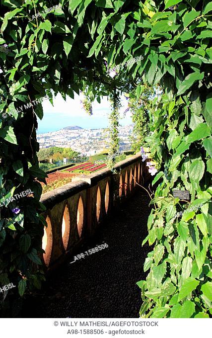 Botanical Gardens, Funchal, Portugal, Europe