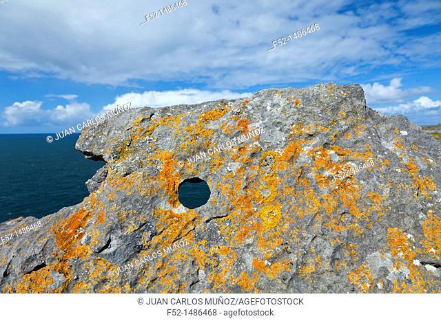 Southern Coast  Inishmore Island, Aran Islands, Galway County, West Ireland, Europe
