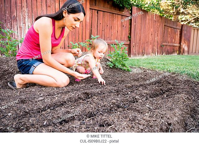 Mother and young daughter planting seeds in garden