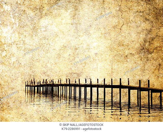 A dock on the Manatee River in Palmetto Florida