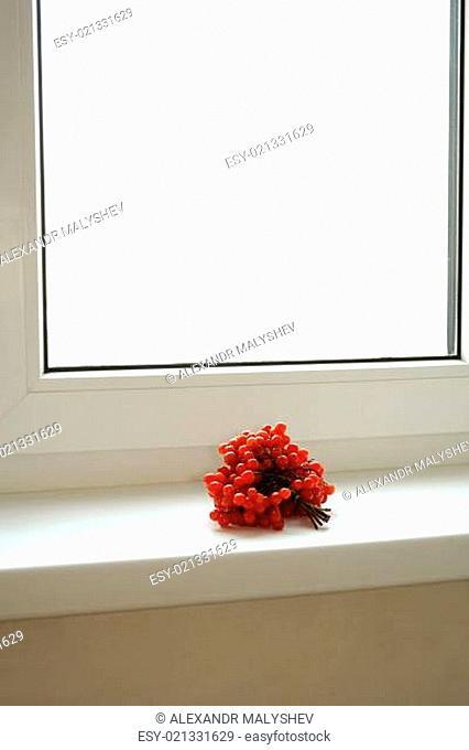 Kalina on the windowsill