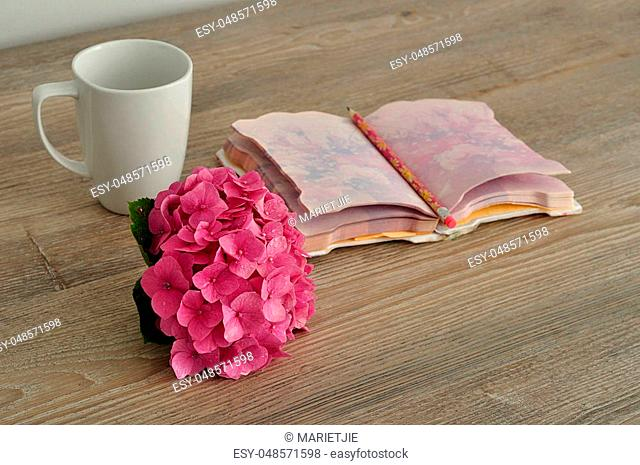 A pink Hydrangea with a notebook, pencil and mug