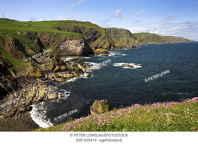 View along the coast of St Abbs nr Berwick- upon Tweed Scotland