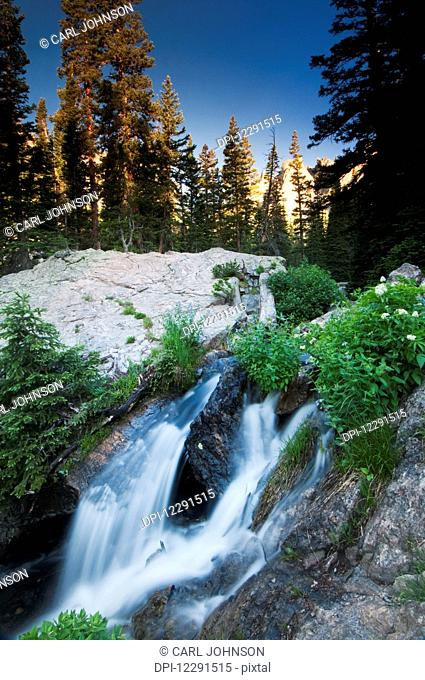 Trailside stream in Rocky Mountain National Park; Colorado, United States of America