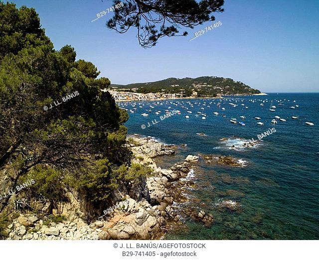 Calella de Palafrugell, Costa Brava. Girona province, Catalonia, Spain
