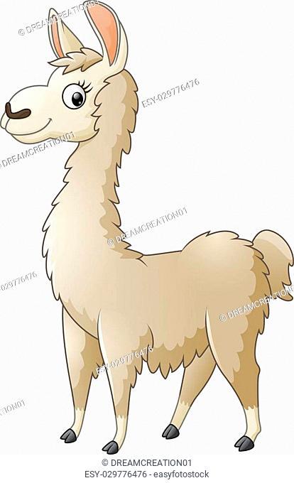 Vector of illustration Llama cartoon