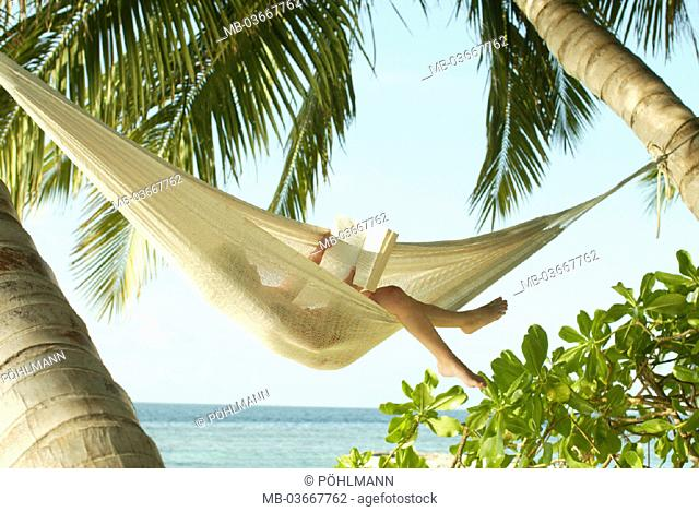 Summers, read, palm beach