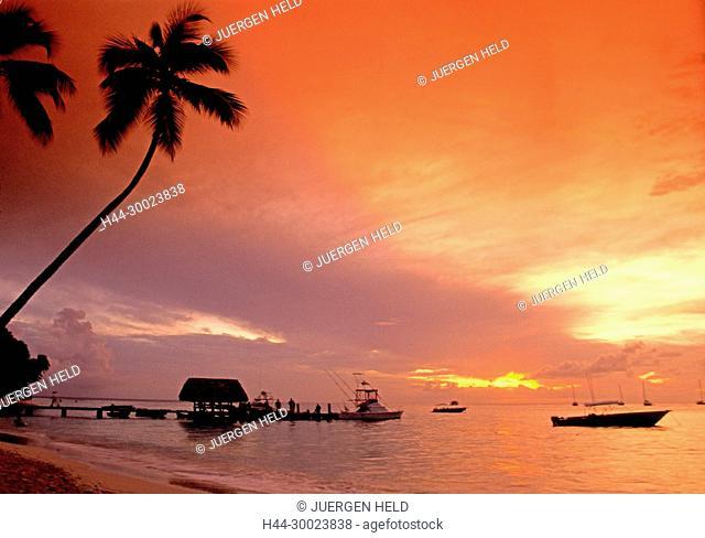 Tobago, Pigeon Point sunset, caribbean sea, palm trees