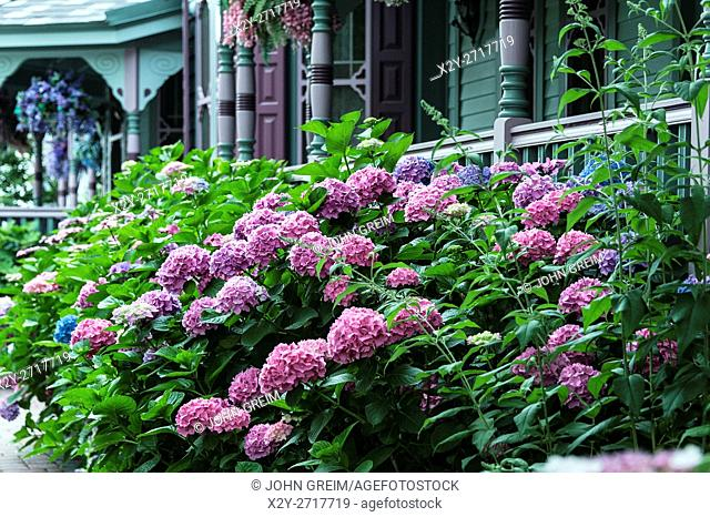 Victorian house and gardens, Cape May, NEw Jersey, USA